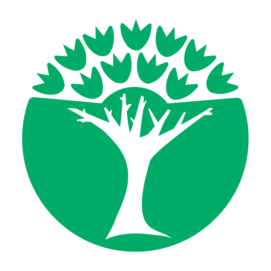 roheline kool