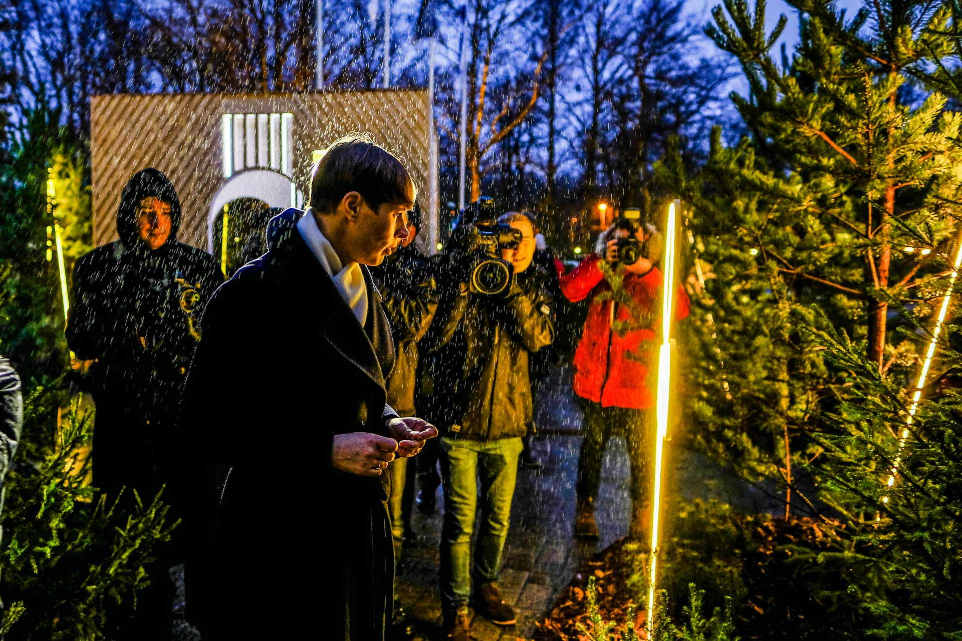 Kersti Kaljulaid – joulumets (4)