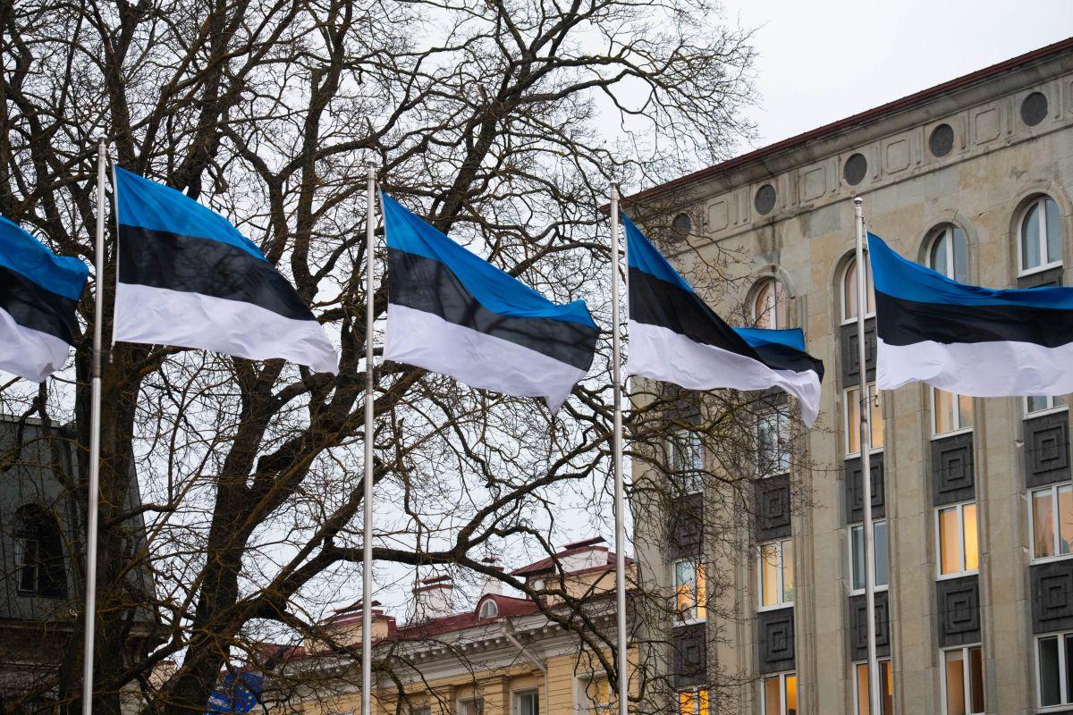 Eesti lipud. Foto Erik Peinar