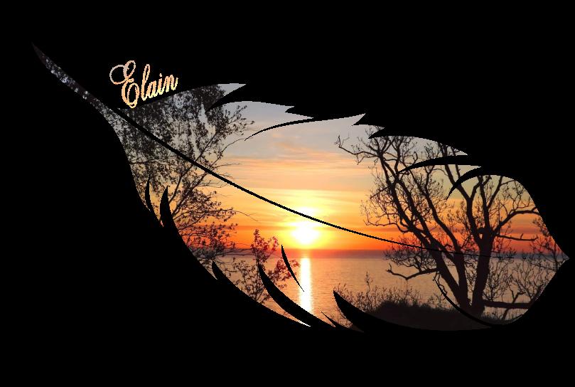 EKSKLUSIIV I Vooremaa kunstnik Elain Birken: saan iga päev inspiratsiooni loomulikust loodusest