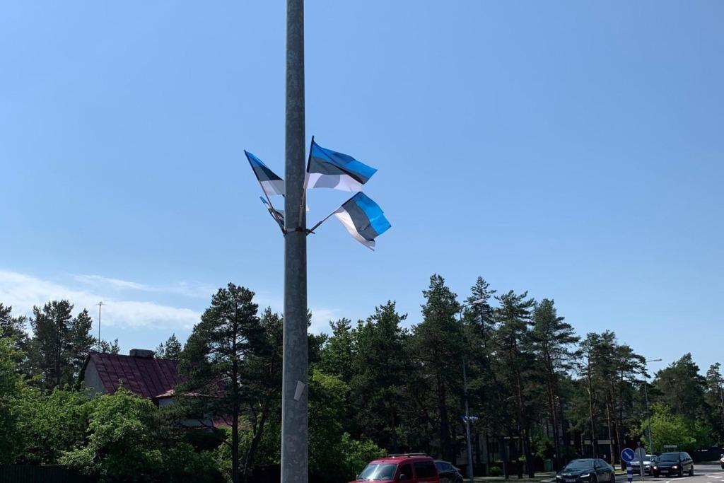 Võidupüha lipud Nõmmel