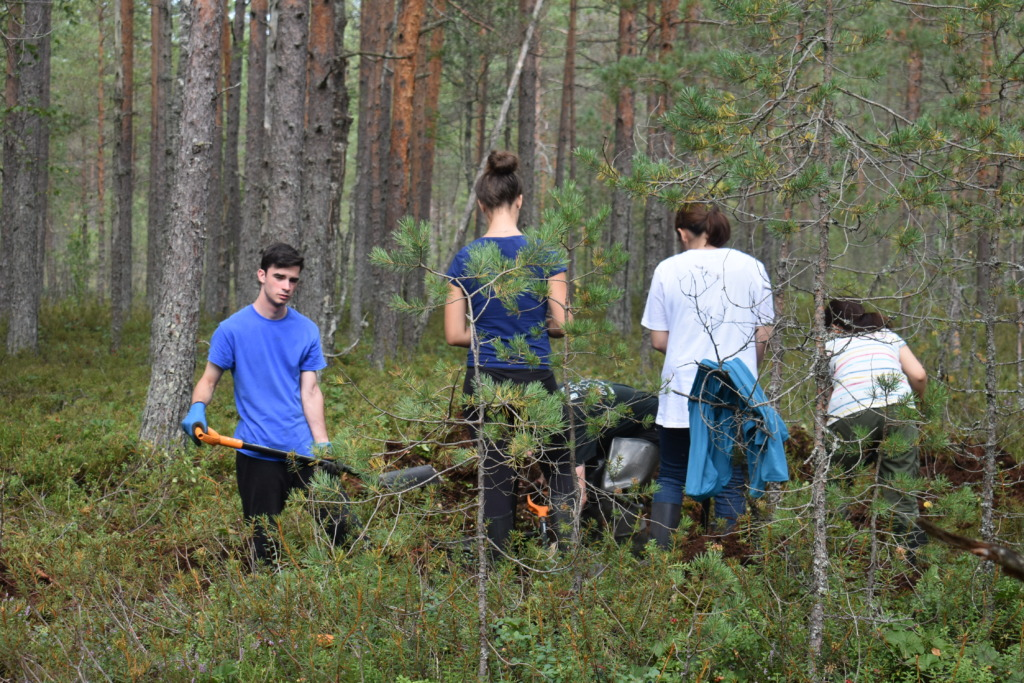 RABAPÄEV I Eestimaa Looduse Fond kutsub rabapäeva puhul soid taastama
