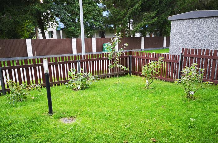 """Projekti """"Roheline õu"""" raames said linnalt haljastustoetust kaks Pirita korteriühistut kokku summas 1200 eurot"""