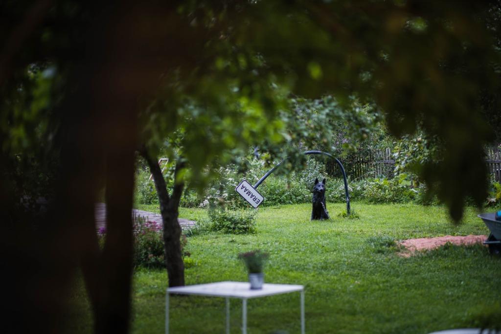 Publikurekordi löönud Voronja suvehooaeg lõppeb nädalavahetusel rohkete sündmuste saatel