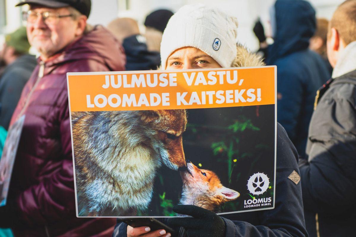 Täna anti Euroopa Komisjonile 1,4 miljonit allkirja, et tehtaks lõpp loomade kasvatamisele puurides