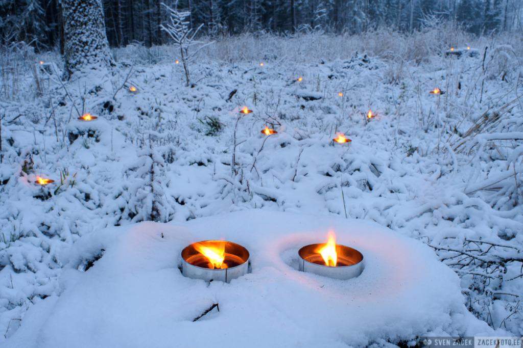 KODANIKUALGATUS I Sajad inimesed süütasid küünlad raielankidel, et näidata, et mets läheb inimestele korda