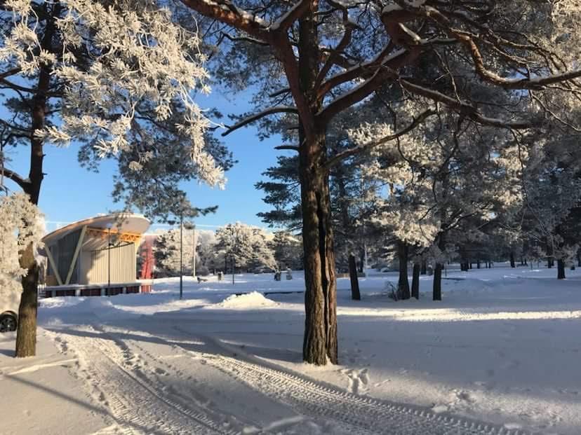 Mustamäel Männi pargis avatakse imeline jõuluturg