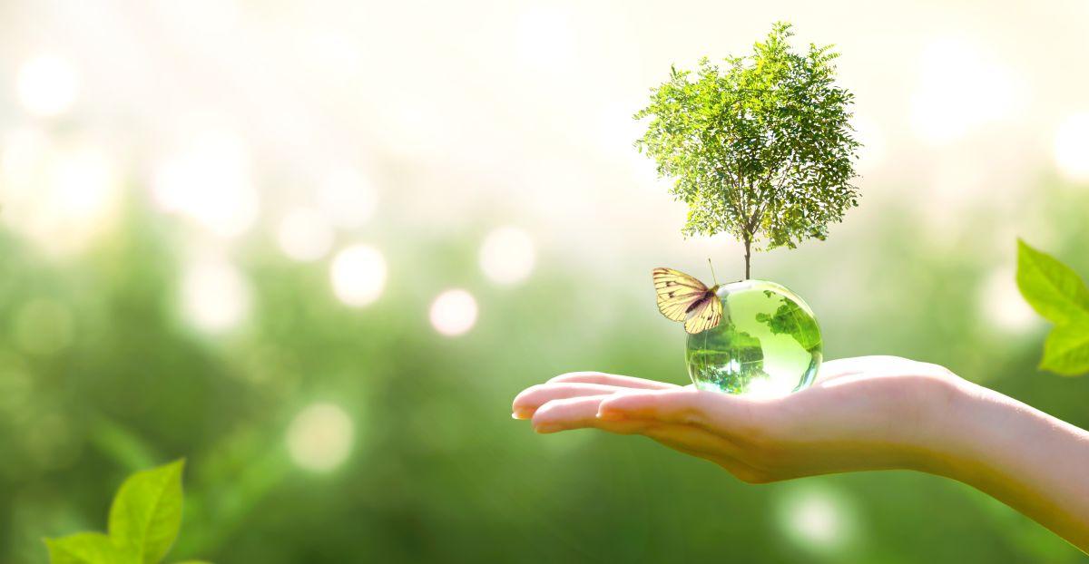 Keskkonnatunnustuse konkursside kandidaate saab esitada 18. augustini