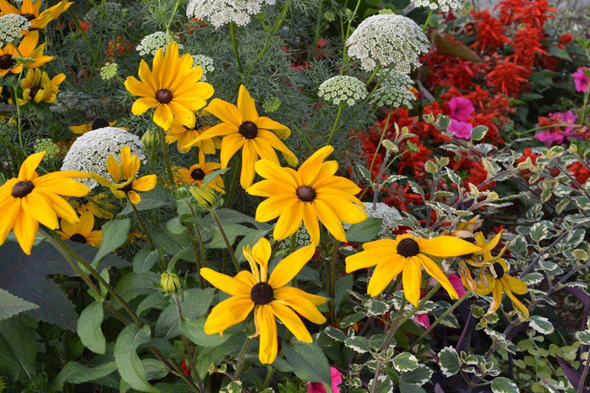 Piritalased on oodatud lilli istutama Jõesuu tee haljasalale