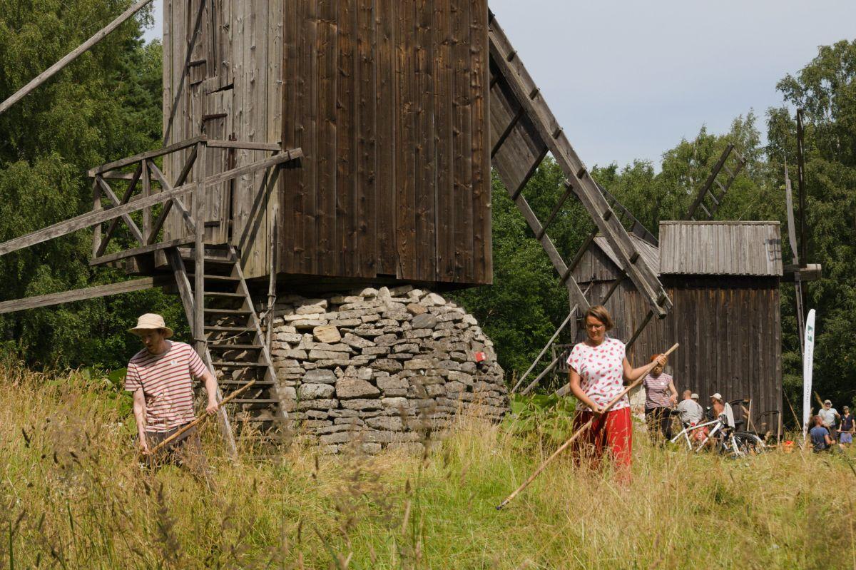 Eestimaa Looduse Fond korraldab suvel mitmed niitmisõpetustalgud
